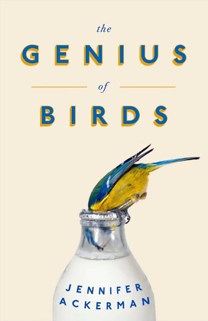 genius_of_birds___jack_smyth-crsite