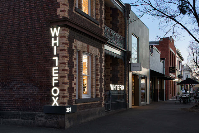 whitefox-1